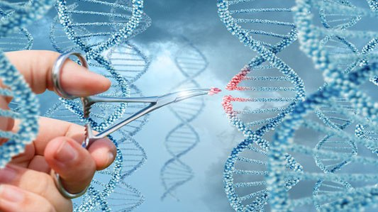 John Humphrys - Gene Editing: How Far Should We Take It?