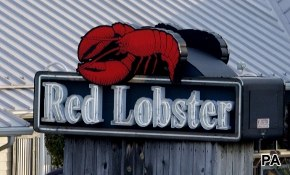 Red Lobster reels in 18-34 year-olds