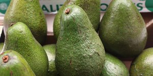 Avocados From Mexico, Turbotax, Busch, Skittles: Super Bowl winners